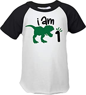 One Birthday Dinosaur Shirt for Boys, Short Sleeve First Birthday Dinosaur Outfit