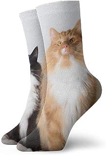 Portrait Of Two Beautiful Black, White And Orange Unisex Athletic Cotton Socks for Sport Training Work