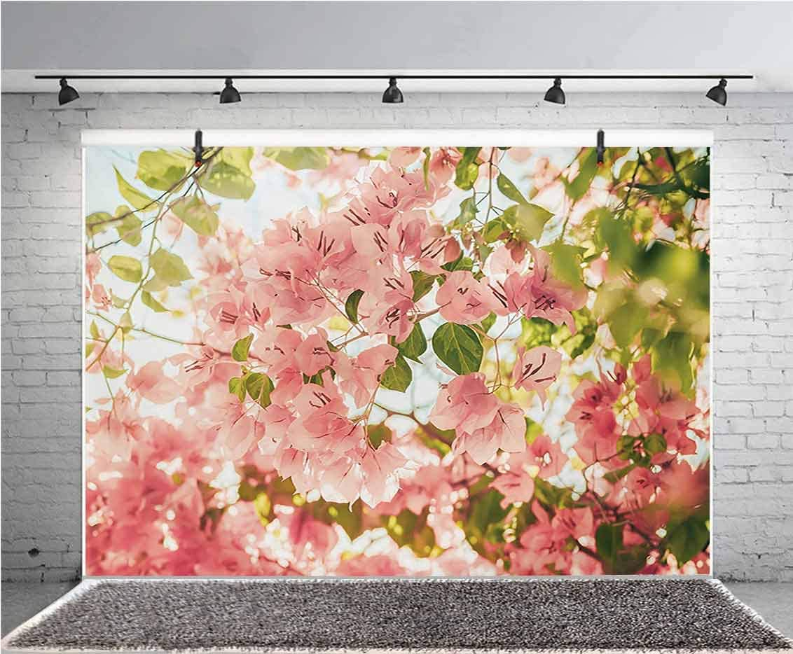 Spring 7x5 FT Vinyl Photography Background Backdrops,Bougainvillea Flowers Branches in Sunny Summer Blossoms Nature Park View Background for Photo Backdrop Studio Props Photo Backdrop Wall