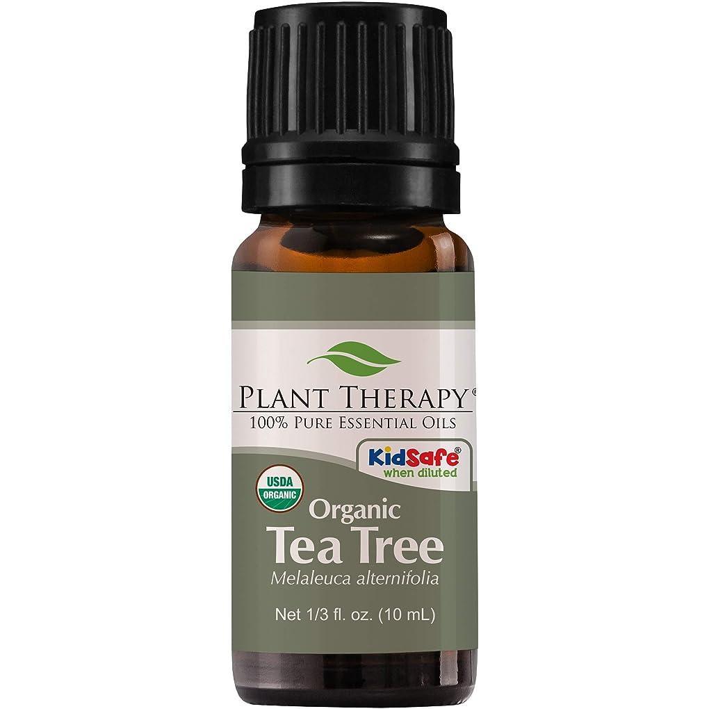 の前で半円蒸気Plant Therapy Essential Oils (プラントセラピー エッセンシャルオイル) オーガニック ティーツリー (メラルーカ) エッセンシャルオイル