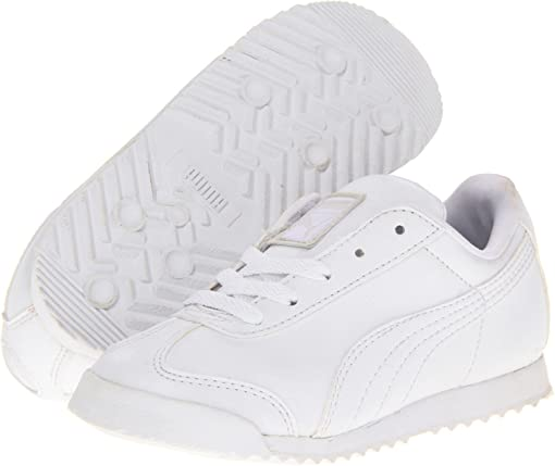 White/Light Gray