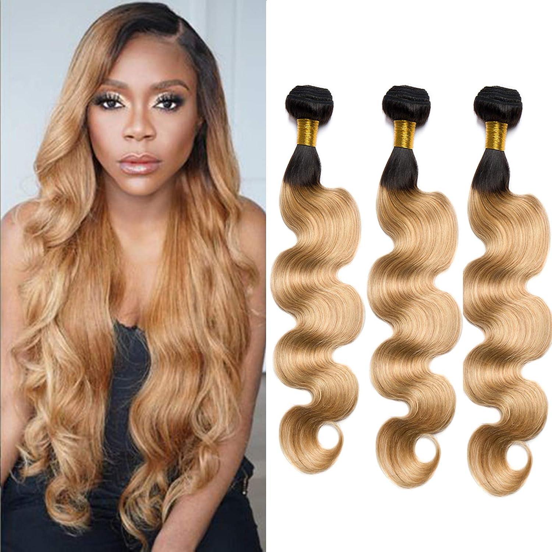 Ombre Body Regular Super sale dealer Wave Hair 3 Bundles 300g 27 Hu T1B Brazilian Two Tone