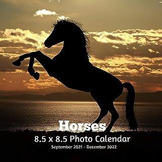 Horses 8.5 X 8.5 Calendar September 2021 -December 2022: Monthly Calendar with U.S./UK/ Canadian/Christian/Jewish/Muslim H...