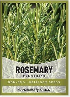 دانه های رزماری برای کاشت - این یک گیاه عالی است ، انواع گیاهان غیر GMO- عالی برای باغبانی در فضای داخلی و فضای باز توسط اصول باغبان