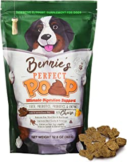 BERNIE'S PERFECT POOP Digestion & General Health Supplement for Dogs: Fiber,..