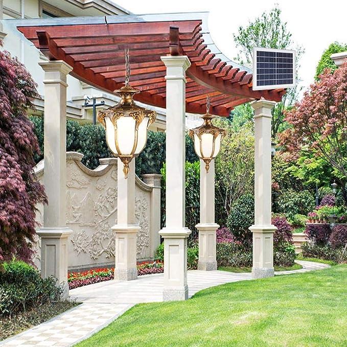 Araña @candelabro Solar, al Aire Libre, jardín, jardín, Vid ...
