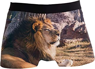 Mens 2 Pack Underwear Comfortable Breathable Trunks Low Rise Boxer Briefs Space Sloth Riding On Unicorn