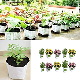 EG ELAMGREEN Grow bags for plants 16x16x30cm (Pack of 10) with Vegetable seeds kit of 8 varieties