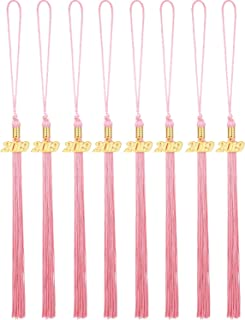 Yaomiao 8 Pieces Graduation Tassel Graduation Cap Tassel with 2019 Year Charm for Graduation Parties, 9.4 Inches (Pink)