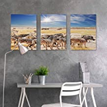 BE.SUN Canvas Print Artwork,Africa,Zebras in Savannah Desert Waterhole on Hot Day Africa Safari Adventure Land Print,Oil Canvas Painting Wall Art 3 Panels,24x47inchx3pcs,Multicolor