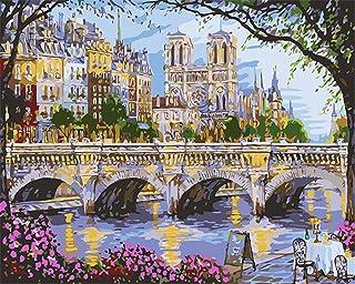 CaptainCrafts Nouvelle Peinture par num/éros 16x20 pour Les Adultes Magpie Amour Fleurs Deux Oiseaux Enfants Toile avec Cadre