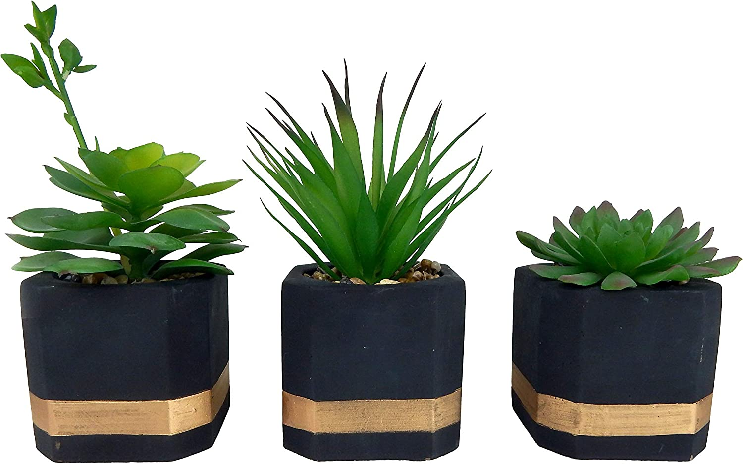 Ella and Our shop OFFers the best service Lulu Design Set of Succulents Ce Ultra-Cheap Deals in Painted Modern Fake