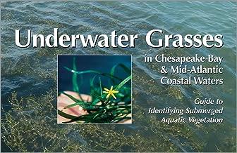 Underwater Grasses in Chesapeake Bay & Mid-Atlantic Coastal Waters: Guide to Identifying Submerged Aquatic Vegetation