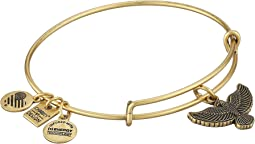 Alex and Ani Charity by Design Spirit of the Eagle Charm Bangle
