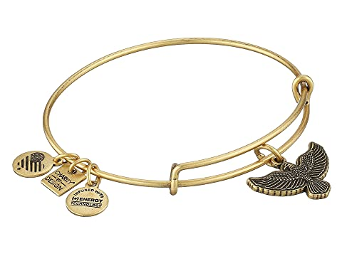 70572a92bf4 Alex and Ani Charity by Design Spirit of the Eagle Charm Bangle at ...