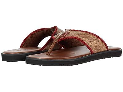 COACH Signature Flip-Flop (Khaki/Saddle) Men