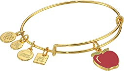 Charity By Design Apple Bangle