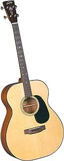 Best blueridge tenor guitars Reviews