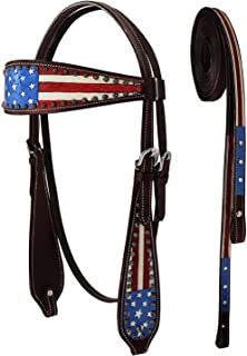 tack and bridle