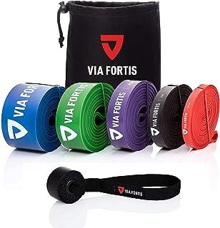 Via Fortis Premium Gummiband + Träningsinstruktioner och väska - gummiband, Pull-Up-band och Pull-Up-hjälp, fitnessband, t...