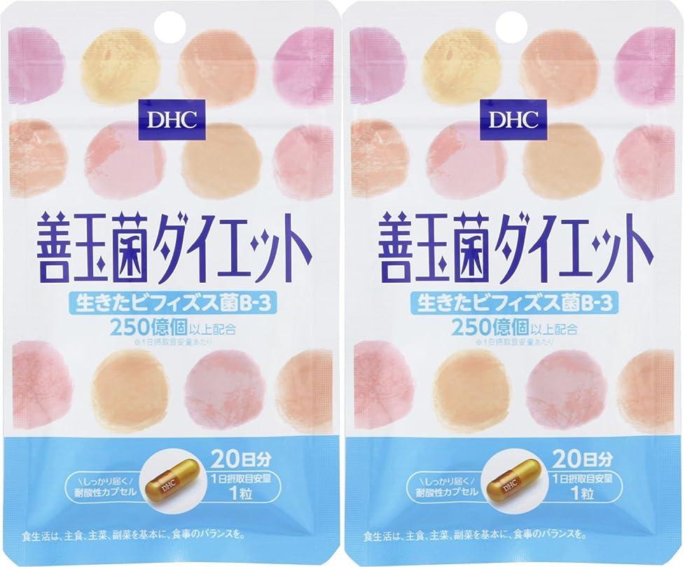 褒賞ペルソナ既に【セット品】DHC 20日善玉菌ダイエット 2個セット