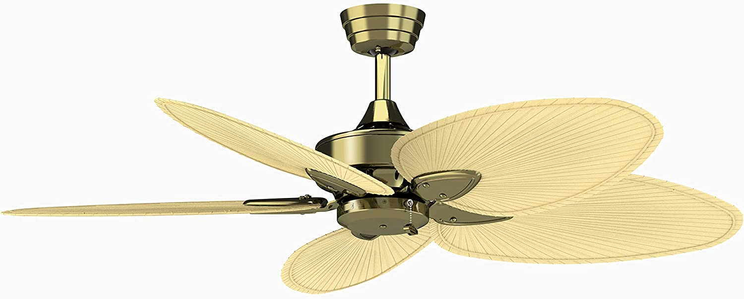 Fanimation Windpointe - 22 inch Natural Antique 55% OFF Pal Brass 2021new shipping free with