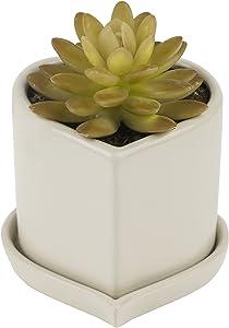 Pure.Lifestyle Pot de Fleur en Céramique avec Plateau Forme Coeur 11cm pour Plante Cactus Succulentes Déco Jardin Balcon BEIGE