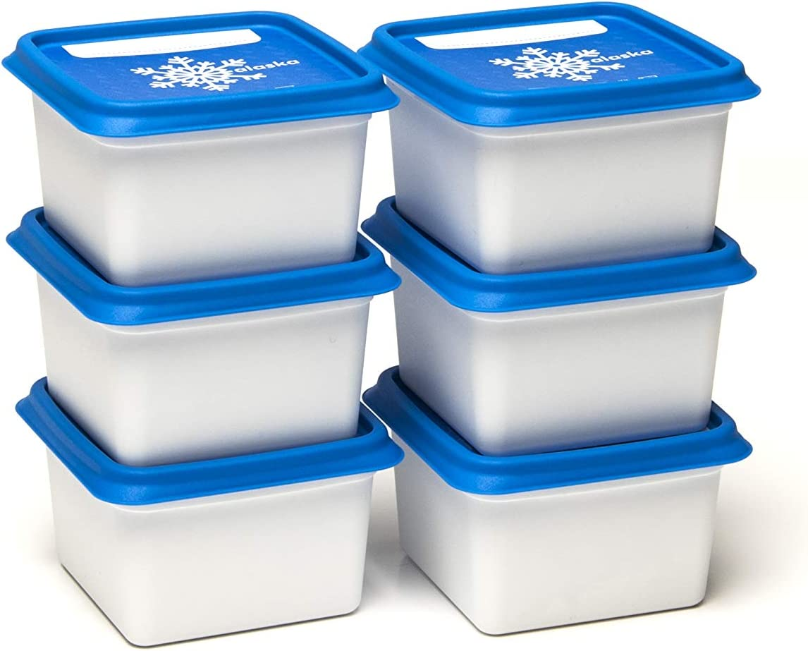 Amuse Alaska - Juego de recipientes para congelación (rectangulares), Plástico (PP), Blanco/Azul, 6 x 200 ml