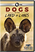 Best nature dogs in the land of lions Reviews