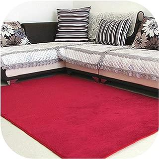 Memory Foam Solid Mat Area Rug Bedroom Rugs Mats Carpet Doormat for Hallway Living Room Kitchen Floor Outdoor,Wine red,600mm x 1600mm