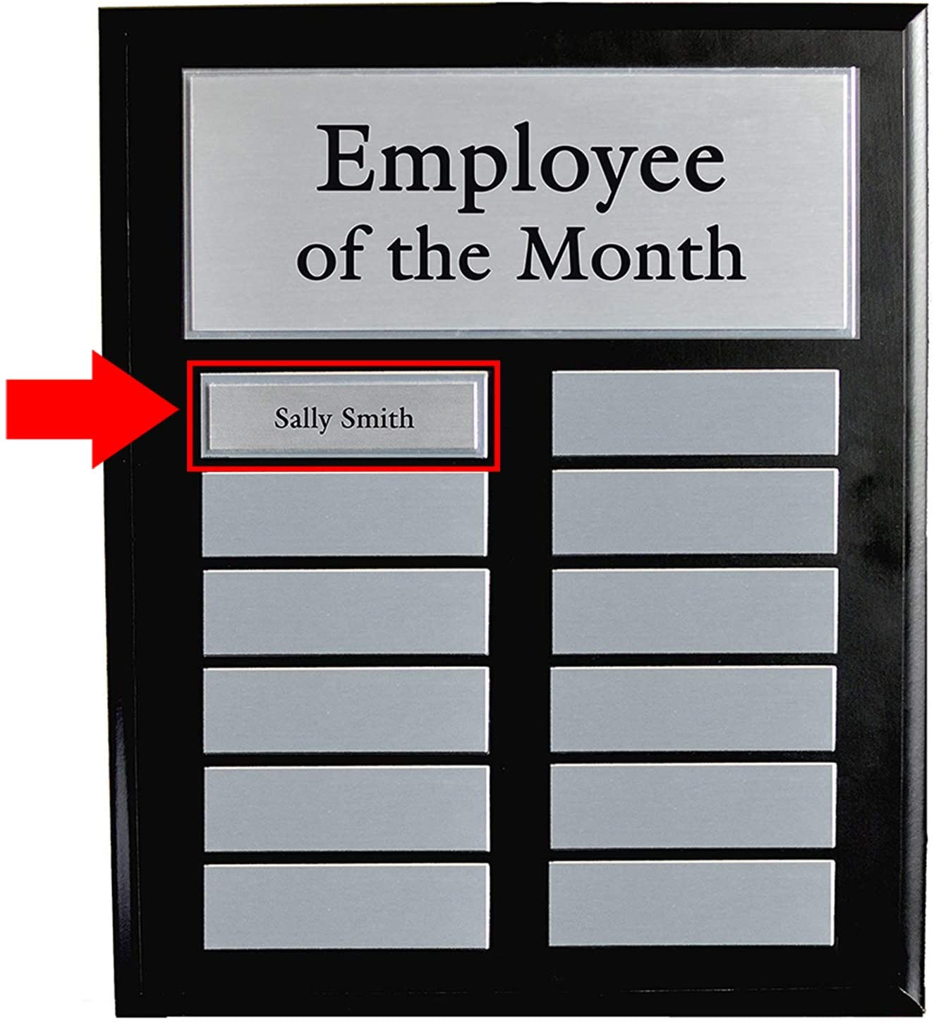 Employee of The Month DIY Perpetual Colored Leaves Plaque Magic Recognition Award Kit Top Performer No Engraving Needed Do It Yourself 12 Plate Fully Customizable Salesperson of The Month