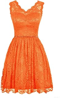 CladiyaDress Women V Neck Sleeveless Lace Short Bridesmaid Dress Graduation Gown D231LF
