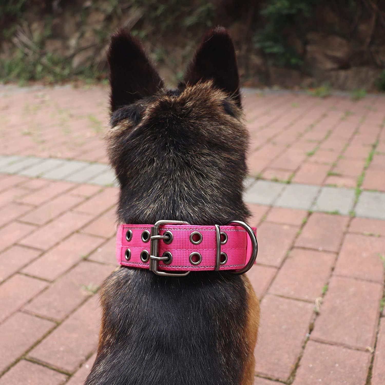 3. Yunleparks Reflective Dog Collar