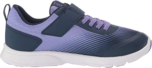 Purple/Navy