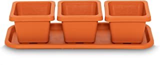 Cube Succulent Planter Clay Set of 3 with Tray (3, 3