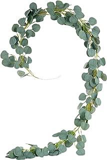 eucalyptus leaves border