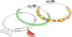 Color Infusion One in a Melon Bracelet Set of 3