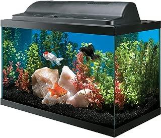 All Glass Aquarium AAG09009 Tank and Eco Hood Combo, 10-Gallon