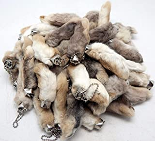 Innoverse Lot of 25 Natural Color Real Authentic Lucky Rabbits FEET Foot Key Chains