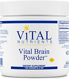 Vital Nutrients - Vital Brain Powder - Support for Brain Health and Cognitive Function - Vegetarian - Natural Lemon Flavor - 180 Grams