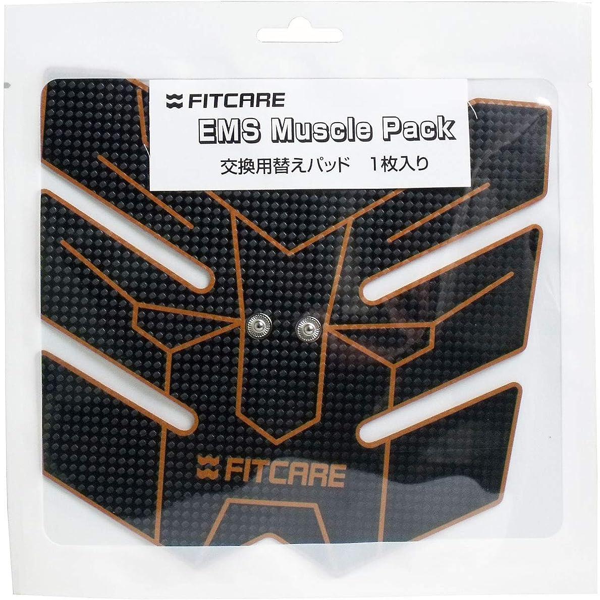 劇的不愉快に変位EMS マッスルパック 交換用替えパッド 1枚入×10個セット