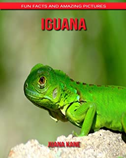 Iguana: Fun Facts and Amazing Pictures