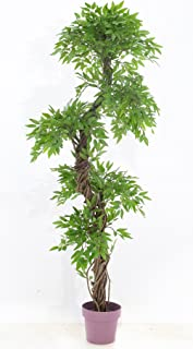 Premium Artificial Plants and Trees, Unique Japanese Fruticosa Tree, Handmade Using Real Bark & Synthetic Leaves, Indoor Plant - 165cm Tall