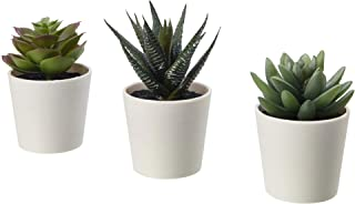 """IKEA Fejka Artificial Potted Plant with Pot Indoor Outdoor Succulent / 3 Pack Size 2 ¼ """" 3 Pack 203.953.31"""