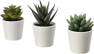 "IKEA Fejka Artificial Potted Plant with Pot Indoor Outdoor Succulent / 3 Pack Size 2 ¼ "" 3 Pack 203.953.31"