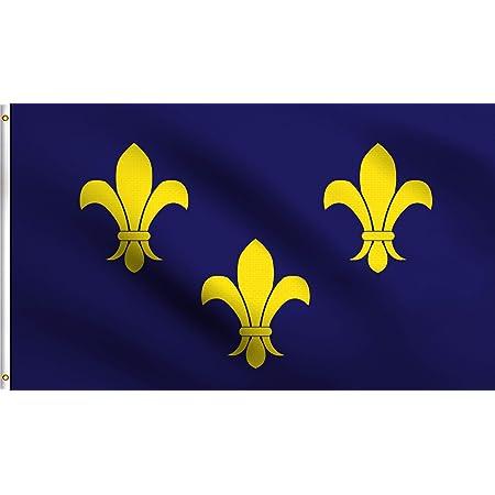 3/'x5/' Fleur De Lis Flag French Cajun Creole Party Louisiana Banner France 3x5