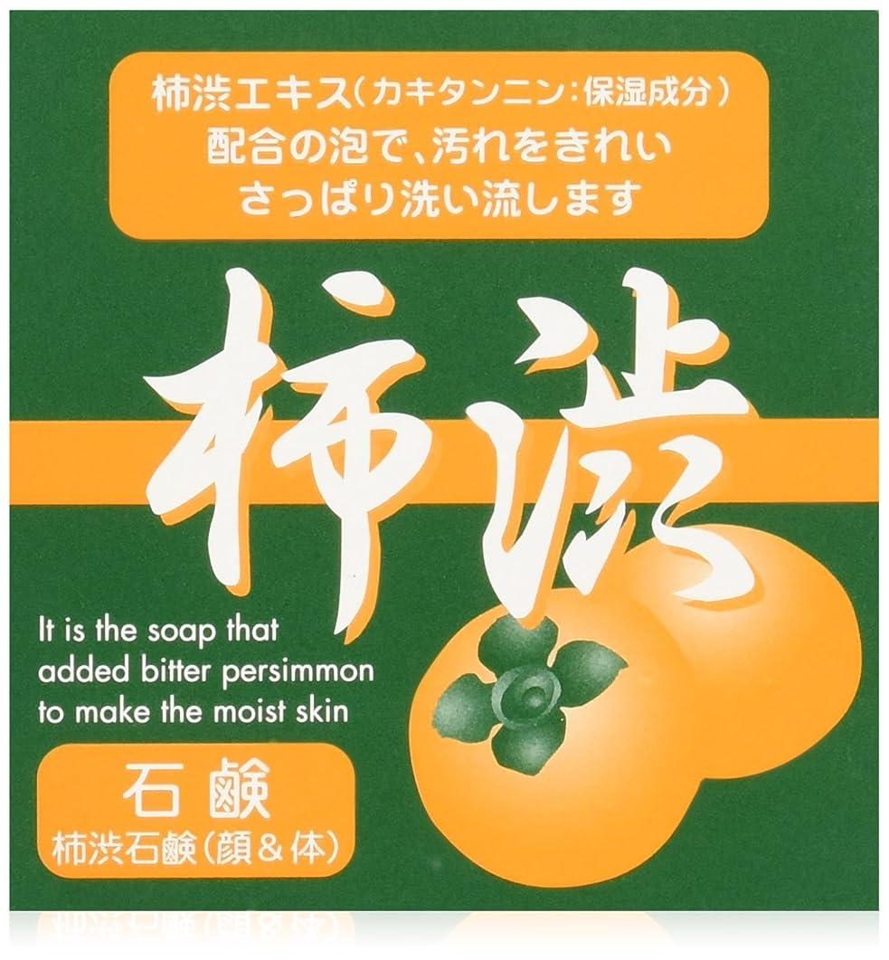 日常的にダイヤモンド動シンライ柿渋石鹸 100g