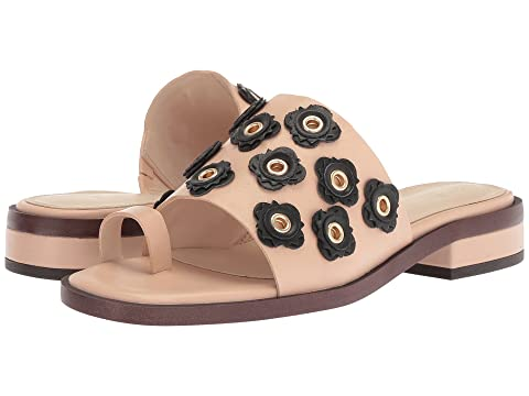 93e049813f56 Cole Haan Carly Floral Sandal at 6pm