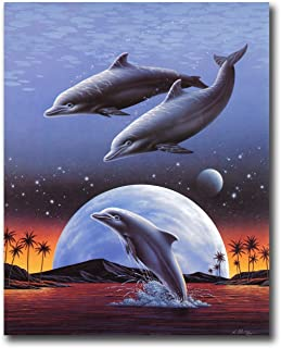 Best dolphins jumping at night Reviews
