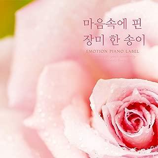 Mejor Bunch Of Pink Roses de 2020 - Mejor valorados y revisados